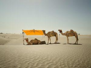Sombrano_Dubai_klein